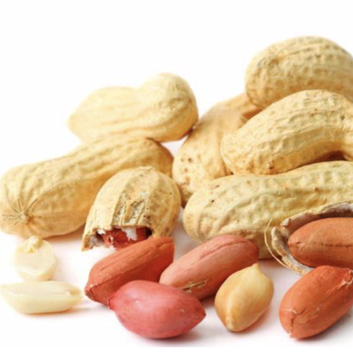 peanuts-best quality of peanuts exporter and supplier peanuts supplier Exporter of peanuts