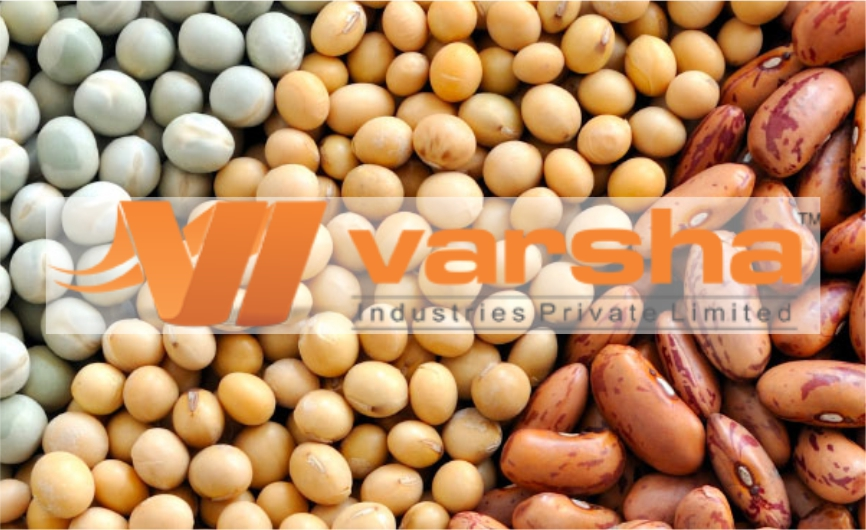 producer and exporter of sesame seeds|sesame seeds in india