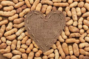 peanuts-best quality of peanuts exporter and supplier|peanuts supplier|Exporter of peanuts|
